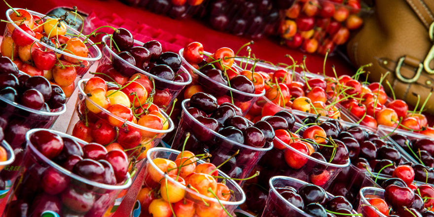 things to do in michigan national cherry festival