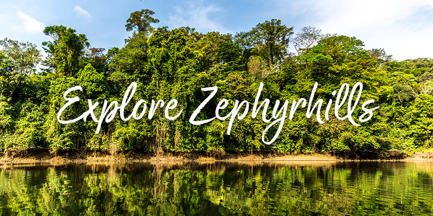 Zephyrhills Attractions In Central Florida Sun Rv Resorts